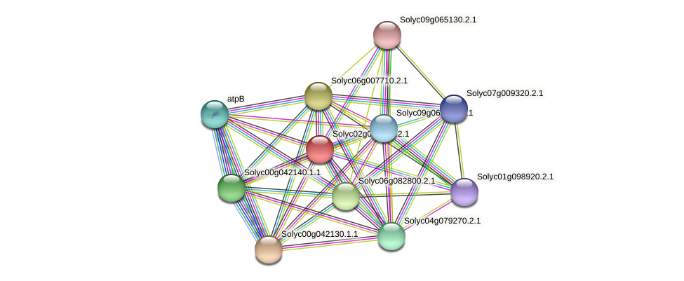 101264394 protein (Solanum lycopersicum) - STRING interaction network