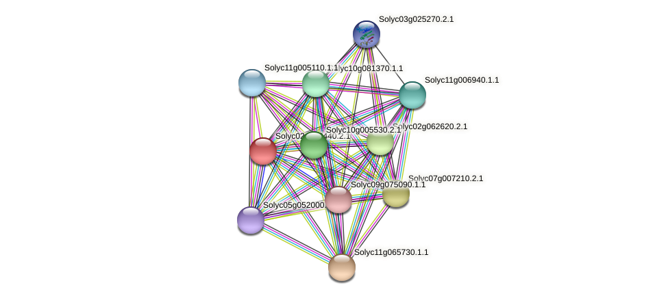 Solyc02g068440.2.1 protein (Solanum lycopersicum) - STRING interaction network