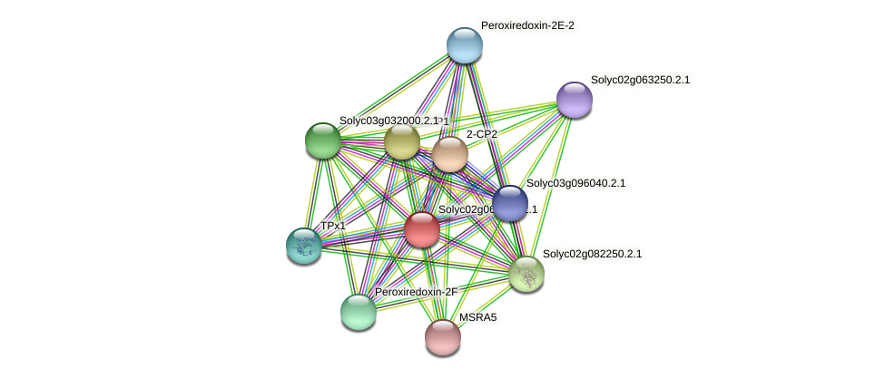 Solyc02g068500.2.1 protein (Solanum lycopersicum) - STRING interaction network