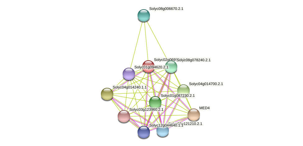 Solyc02g069520.2.1 protein (Solanum lycopersicum) - STRING interaction network