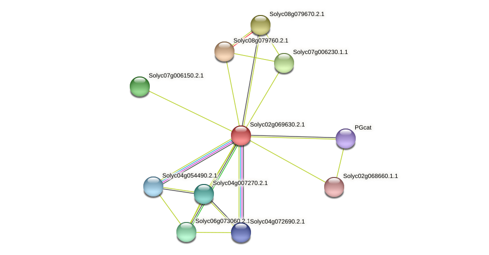 101266183 protein (Solanum lycopersicum) - STRING interaction network