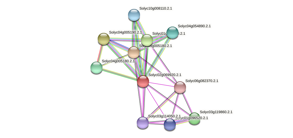 Solyc02g069920.2.1 protein (Solanum lycopersicum) - STRING interaction network