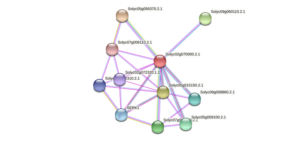 Solyc02g070000.2.1 protein (Solanum lycopersicum) - STRING interaction network