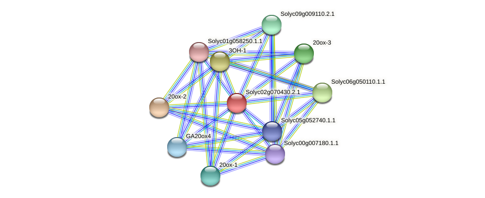 Solyc02g070430.2.1 protein (Solanum lycopersicum) - STRING interaction network