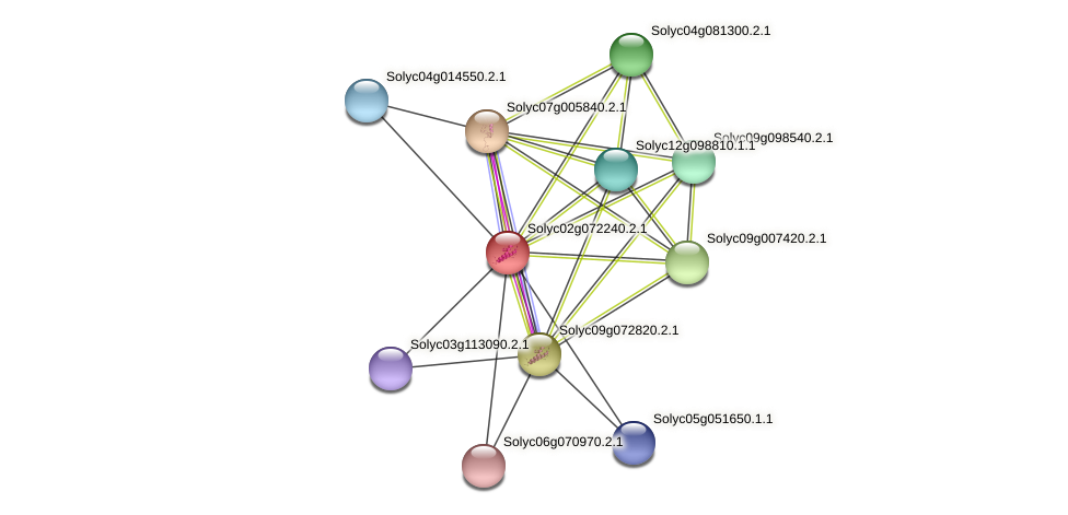 Solyc02g072240.2.1 protein (Solanum lycopersicum) - STRING interaction network