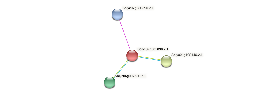 101252649 protein (Solanum lycopersicum) - STRING interaction network