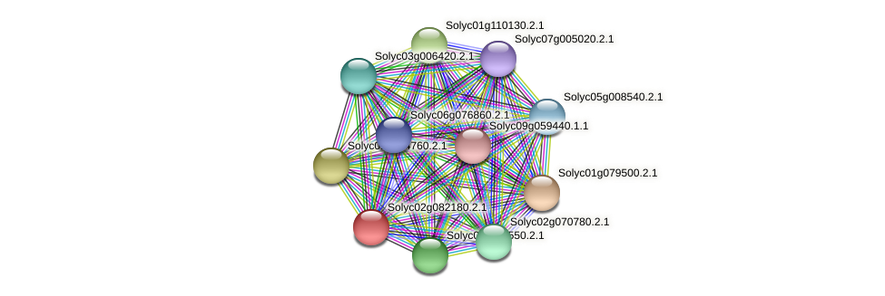 Solyc02g082180.2.1 protein (Solanum lycopersicum) - STRING interaction network