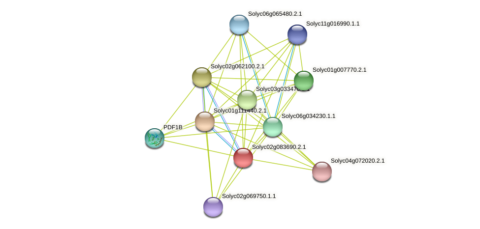 Solyc02g083690.2.1 protein (Solanum lycopersicum) - STRING interaction network