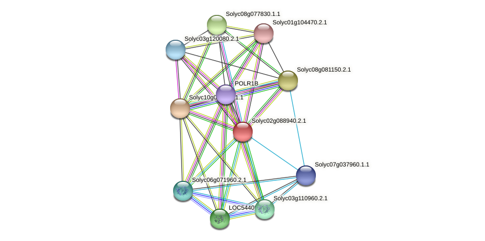 Solyc02g088940.2.1 protein (Solanum lycopersicum) - STRING interaction network