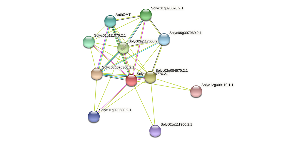 101264879 protein (Solanum lycopersicum) - STRING interaction network