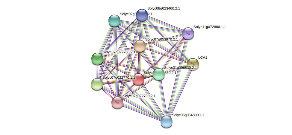 Solyc02g090560.2.1 protein (Solanum lycopersicum) - STRING interaction network
