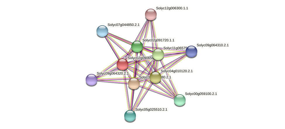 Solyc02g090650.2.1 protein (Solanum lycopersicum) - STRING interaction network