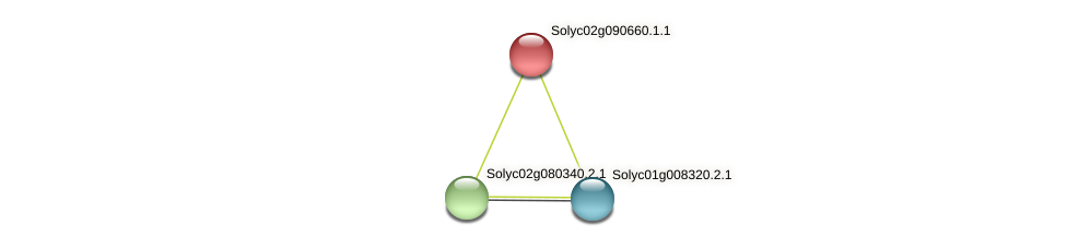 Solyc02g090660.1.1 protein (Solanum lycopersicum) - STRING interaction network