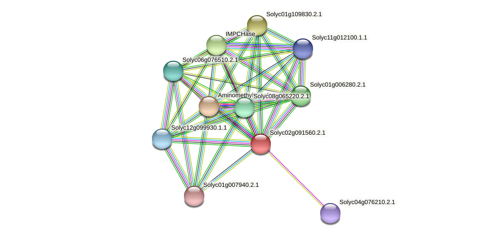 Solyc02g091560.2.1 protein (Solanum lycopersicum) - STRING interaction network