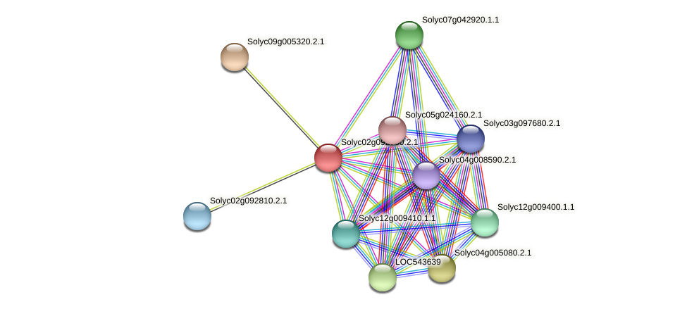 Solyc02g092750.2.1 protein (Solanum lycopersicum) - STRING interaction network