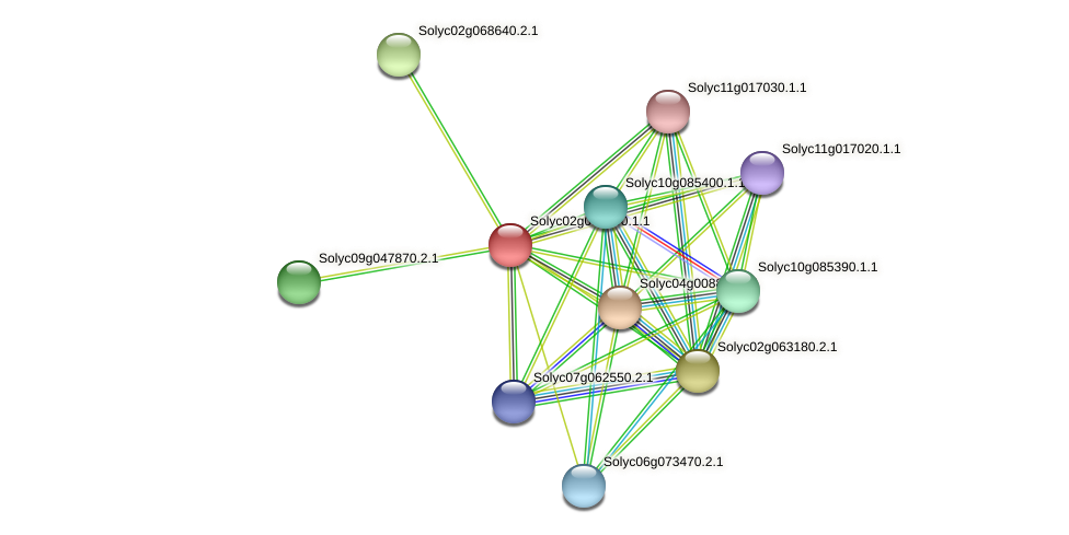 Solyc02g093400.1.1 protein (Solanum lycopersicum) - STRING interaction network