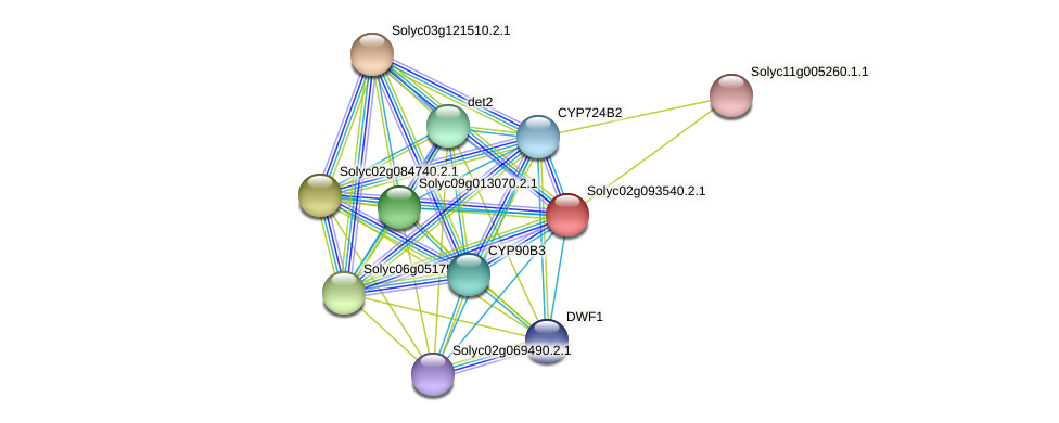 Solyc02g093540.2.1 protein (Solanum lycopersicum) - STRING interaction network