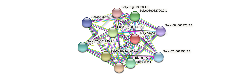 Solyc02g093950.2.1 protein (Solanum lycopersicum) - STRING interaction network