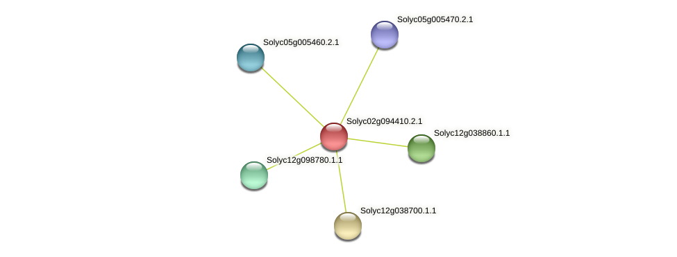 Solyc02g094410.2.1 protein (Solanum lycopersicum) - STRING interaction network