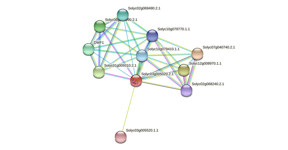 Solyc03g005020.2.1 protein (Solanum lycopersicum) - STRING interaction network