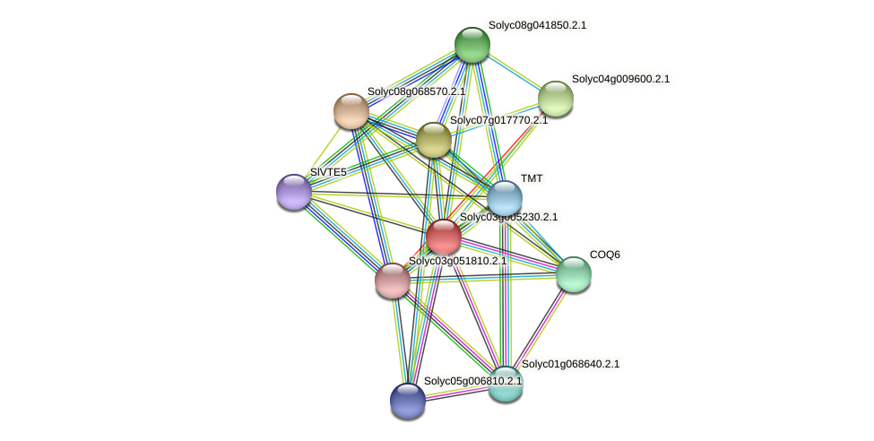 Solyc03g005230.2.1 protein (Solanum lycopersicum) - STRING interaction network