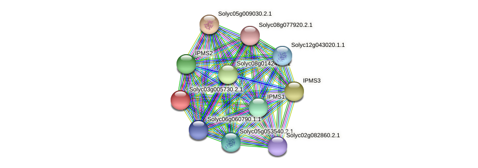 Solyc03g005730.2.1 protein (Solanum lycopersicum) - STRING interaction network