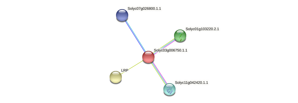 Solyc03g006750.1.1 protein (Solanum lycopersicum) - STRING interaction network
