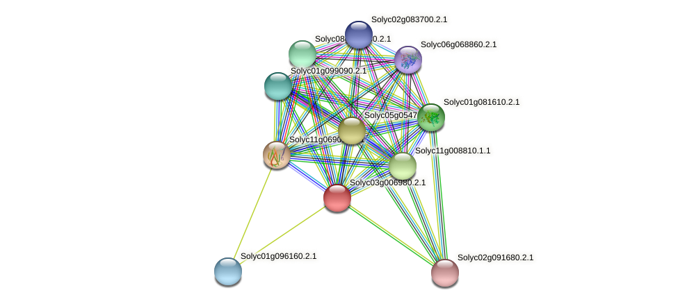 Solyc03g006980.2.1 protein (Solanum lycopersicum) - STRING interaction network