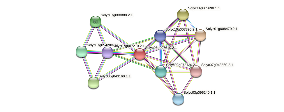 Solyc03g007610.2.1 protein (Solanum lycopersicum) - STRING interaction network