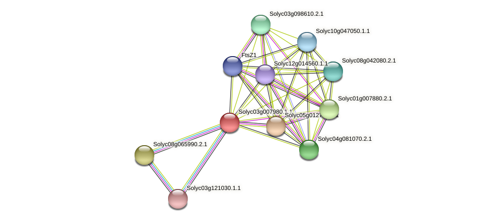 101266303 protein (Solanum lycopersicum) - STRING interaction network