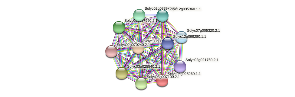 Solyc03g025260.1.1 protein (Solanum lycopersicum) - STRING interaction network