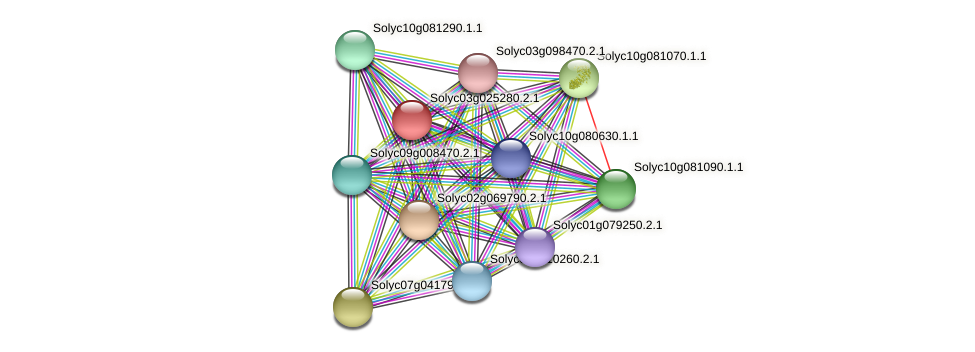 Solyc03g025280.2.1 protein (Solanum lycopersicum) - STRING interaction network