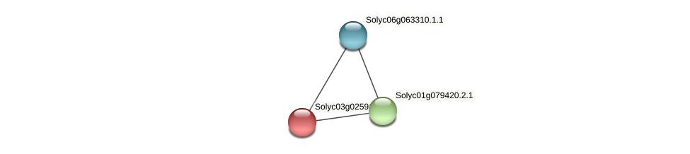 Solyc03g025910.2.1 protein (Solanum lycopersicum) - STRING interaction network