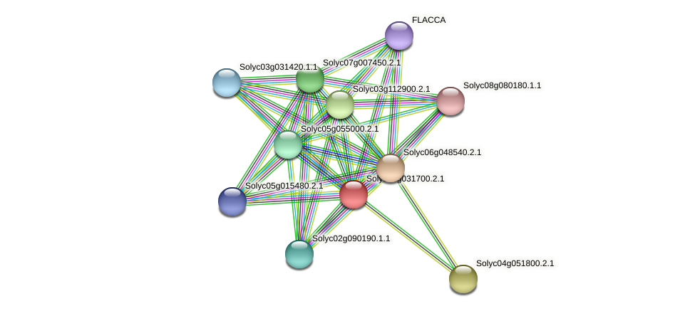 Solyc03g031700.2.1 protein (Solanum lycopersicum) - STRING interaction network