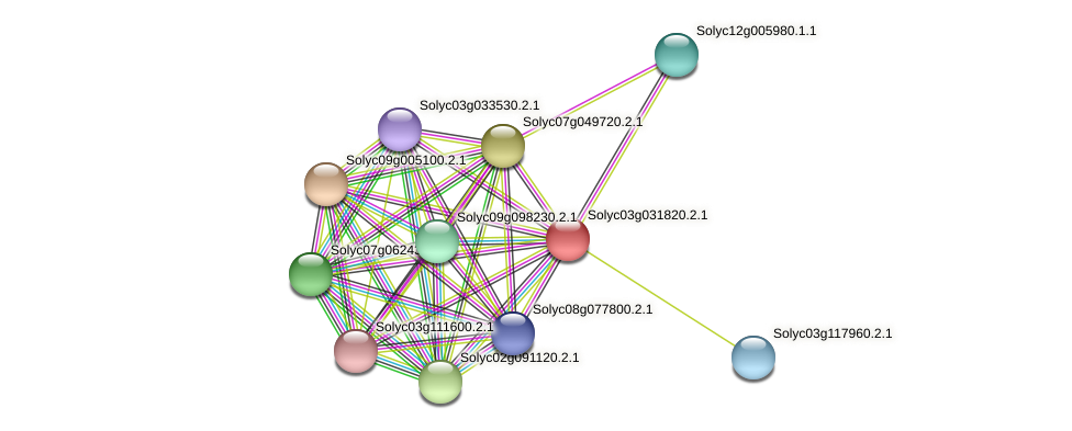 Solyc03g031820.2.1 protein (Solanum lycopersicum) - STRING interaction network