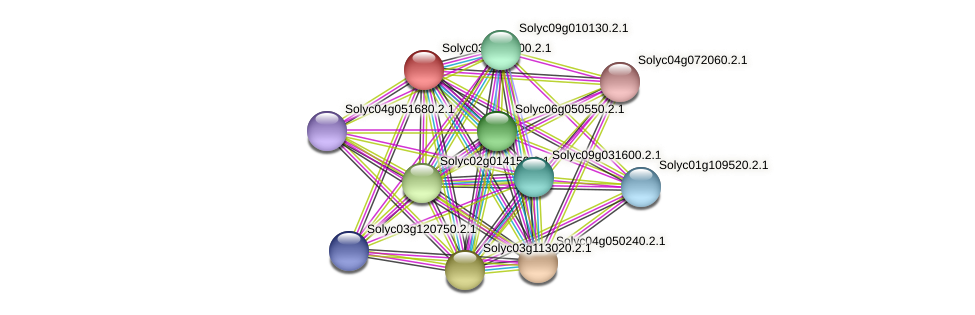 Solyc03g033400.2.1 protein (Solanum lycopersicum) - STRING interaction network