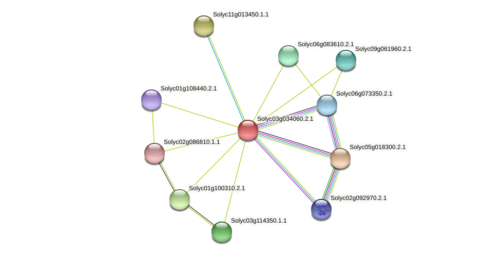 Solyc03g034060.2.1 protein (Solanum lycopersicum) - STRING interaction network