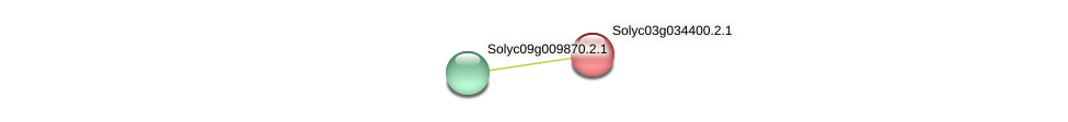 101261991 protein (Solanum lycopersicum) - STRING interaction network