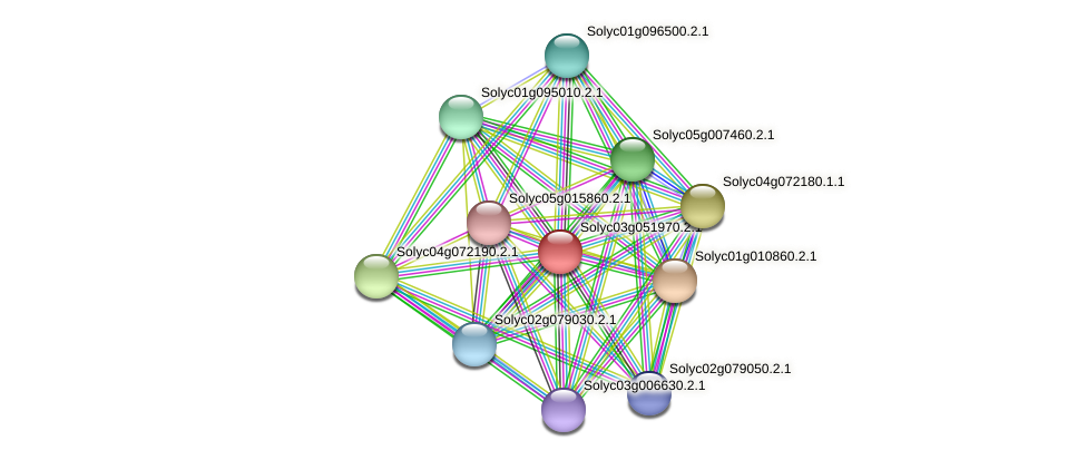 Solyc03g051970.2.1 protein (Solanum lycopersicum) - STRING interaction network
