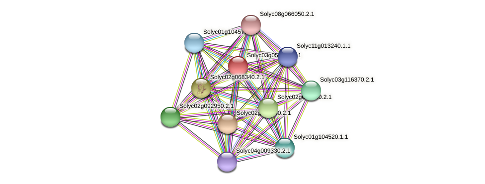 Solyc03g053100.2.1 protein (Solanum lycopersicum) - STRING interaction network