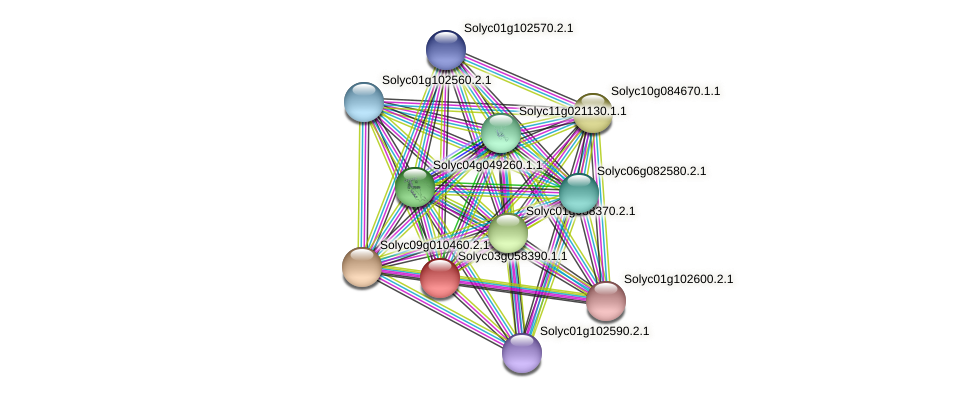 Solyc03g058390.1.1 protein (Solanum lycopersicum) - STRING interaction network