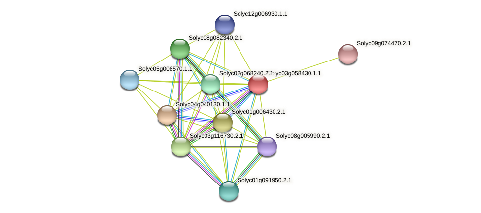 Solyc03g058430.1.1 protein (Solanum lycopersicum) - STRING interaction network