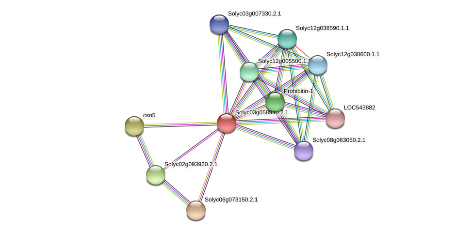 Solyc03g058940.2.1 protein (Solanum lycopersicum) - STRING interaction network