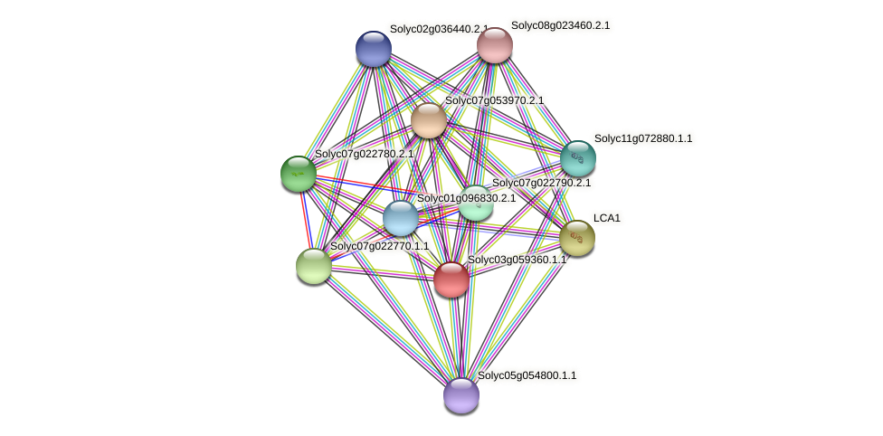 Solyc03g059360.1.1 protein (Solanum lycopersicum) - STRING interaction network