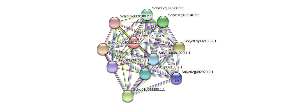 Solyc03g070470.1.1 protein (Solanum lycopersicum) - STRING interaction network
