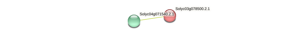 Solyc03g078500.2.1 protein (Solanum lycopersicum) - STRING interaction network