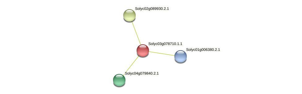 Solyc03g078710.1.1 protein (Solanum lycopersicum) - STRING interaction network