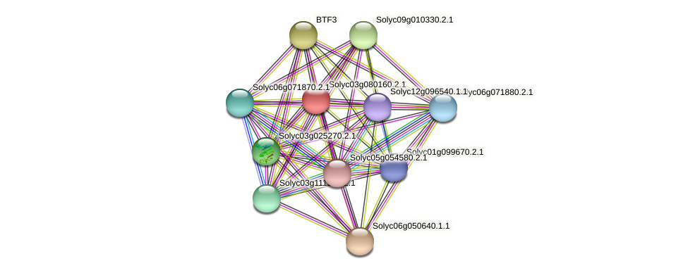 Solyc03g080160.2.1 protein (Solanum lycopersicum) - STRING interaction network