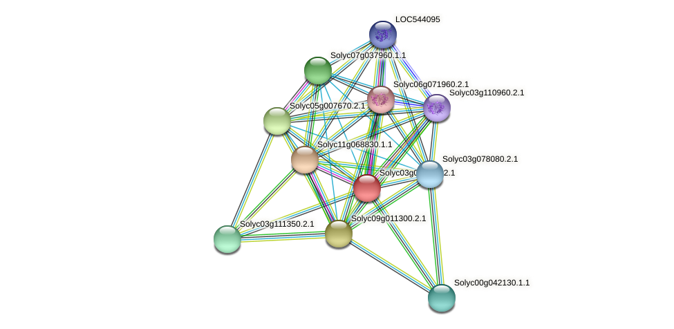 101249532 protein (Solanum lycopersicum) - STRING interaction network