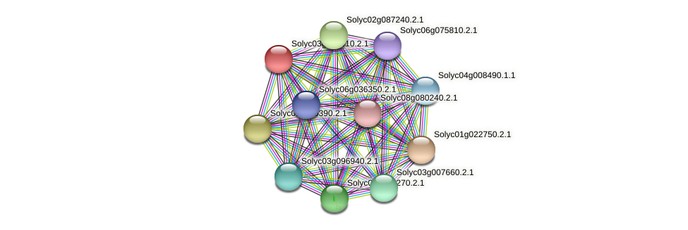Solyc03g097010.2.1 protein (Solanum lycopersicum) - STRING interaction network